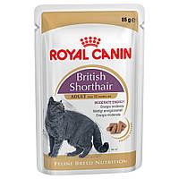 Royal Canin British Shorthair/Роял Канин влажный корм в соусе для британской породы старше 12мес. 85г