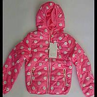 Весенняя куртка на девочку HAAPPY HOVSE, фото 1
