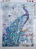 Алмазная вышивка 34х24 Синий павлин Матовая