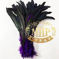 Перо петуха Черно-фиолетовый градиент, длинна 30-35 см, 1шт