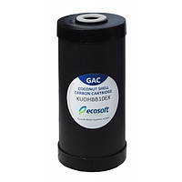 """Картридж Ecosoft для удаления хлора 4,5 x 10 """" (CHV4510ECOEXP)"""