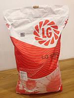 Семена подсолнечника Лимагрейн ЛГ 5580 (Limagrain LG)
