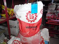 Семена подсолнечника Limagrain LG Мегасан - Лимагрейн ЛГ Megasun