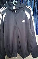 Спортивный костюм adidas большой