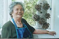 Грибные блоки вешенки. Обучение выращиванию грибов на дому.