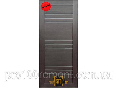 Дверне полотно AG-8 Alegra, фото 2