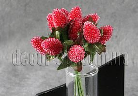 Ежевика красная проволоке 12 шт