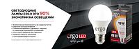 LED лампы Ergo