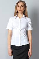 Белая классическая блузка с коротким рукавом Р60
