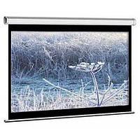Проекционный экран M100NWV1 ELITE SCREENS