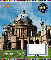 """Тетрадь 24листа клетка """"1 Вересня"""" """"Оксфорд колледж"""", фото 3"""