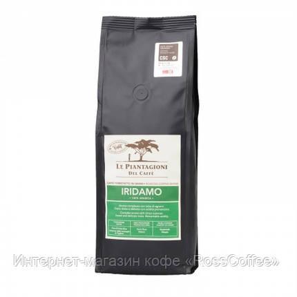 Кофе в зернах Le Piantagioni del Caffe Iridamo 500 г, фото 2
