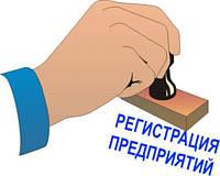 Регистрация предприятия Киев