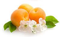 Порошок из абрикоса 100 г
