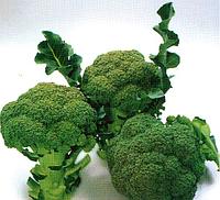 НЕКСОС F1 - семена капусты брокколи, 1 000 семян, Sakata