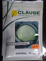 Семена капусты Капорал F1 (Clause) 2500 семян — средняя (85-100 дней), белокочанная