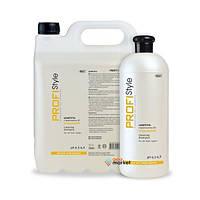 ProfiStyle Очищающий шампунь ProfiStyle Care для всех типов волос 5000 мл