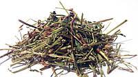 Горец перечный трава 100 грамм (водяной перец)