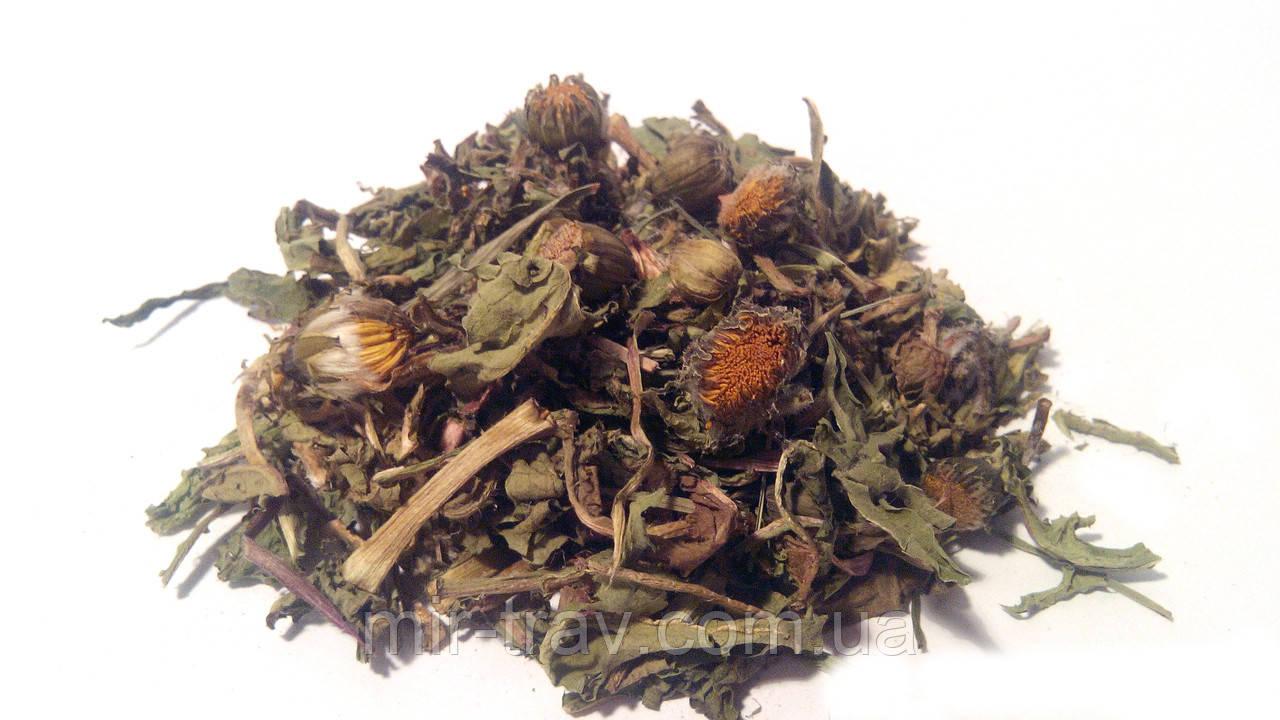 Одуванчик лекарственный листья (трава)