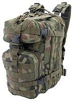 Тактический рюкзак Camo Military Gear WZ93 Pantera 25L