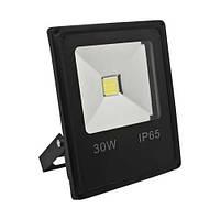 Прожектор светодиодный Feron LL-838 30W 6400К белый
