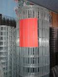 Сетка сварная оцинкованная, Ячейка 35х35 мм. Диаметр 1,8 мм. Ширина 1,5 м., длина 10 метров, фото 3