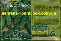 Феникс плюс среднеспелый сорт огурца для открытого грунта салатный, устойчив к болезням (5г в пачке)