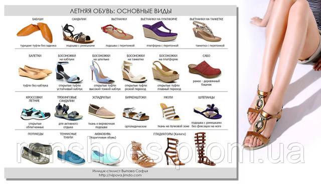 виды женских ботинок фото и название