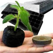 Для выращивания рассады,