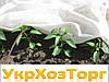 Агроволокно Agreen белое 19 плотность 3.2*100