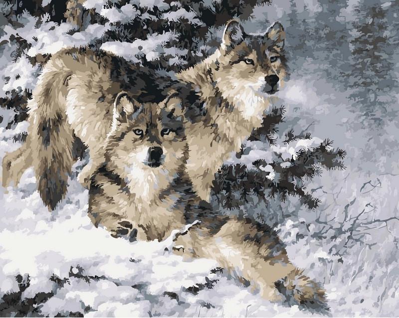 Раскраска по цифрам 40×50 см. Снежные волки Художник Ларри Фэннинг