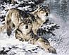 Набор для рисования 40×50 см. Снежные волки Художник Ларри Фэннинг