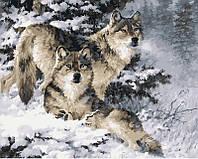Раскраска по цифрам 40×50 см. Снежные волки Художник Ларри Фэннинг, фото 1