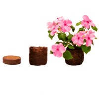 Торфянные Таблетки в оболочке Jiffy d=24мм для цветочных культур