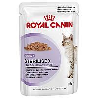 Royal Canin Sterilised in GRAVY/Роял Канин влажный корм для стерилизованных животных 85г