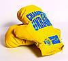 Боксерська груша Champion of Ukraine маленька Danko toys, фото 3