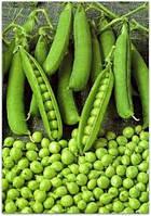 Семена Горох Альфа    20г. (пакет-гигант), ТМ Урожай