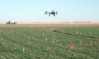Украинской сельхозпродукции упростили доступ к еще одному рынку