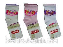 Носки Nesti Хлопок р.6-12,3-4 года