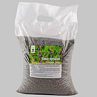 Продам семена Вики, сорт Прибужская