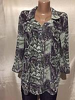 Блуза женская Sedato