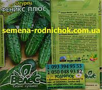 Феникс плюс среднеспелый сорт огурца для открытого грунта салатный, устойчив к болезням