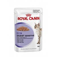 Royal Canin Digest Sensitive in GRAVY/Роял Канин влажный корм кошек с чувствительным пищеварением 85г