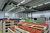Хранение продуктов питания в холодильной камере