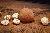 """Шоколадные конфеты ручной работы """"Трюфель с фундуком""""."""