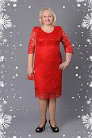 Платье новинка  красивое  Донна  больших размеров нарядное в размерах 52, 54, 56, 58, 60 красное