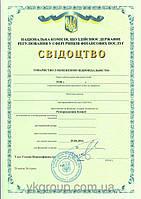 Получение лицензий на финансовые услуги. Лицензирование финансовых услуг
