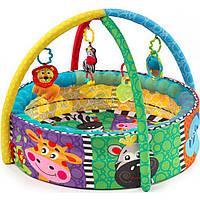 Детский коврик Playgro Развивающий коврик-бассейн (184007)
