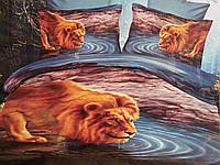 Постельное белье 3D. Лев у реки. Львы