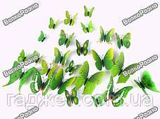 Наклейки обемные 3D/3Д бабочки на стену,холодильник для декора - зеленая серия, фото 3